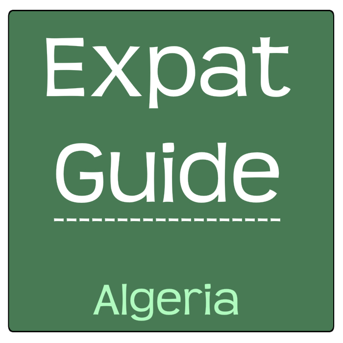 Algerian Expats